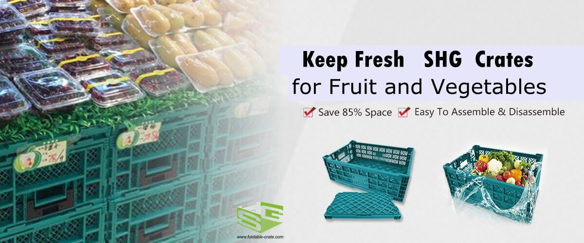 Collapsible Plastic Crates for Fruit and Vegetables-SHG